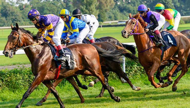 Horseracing with colourful jockeys