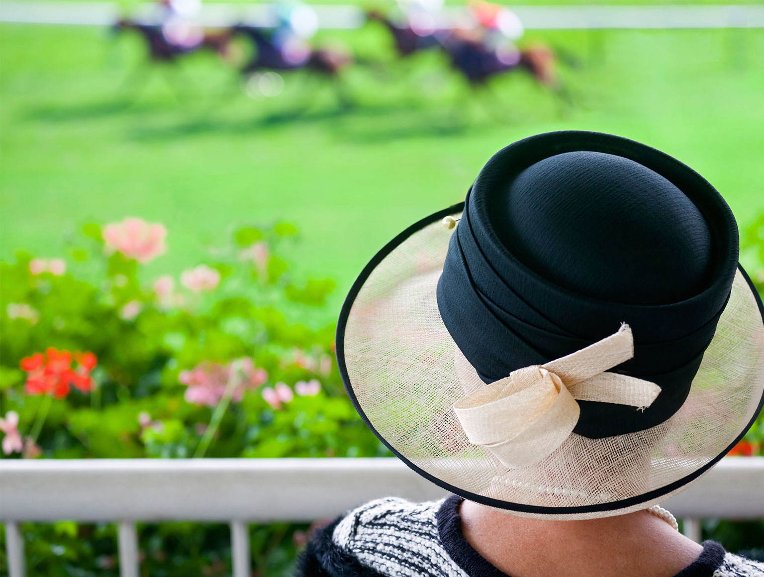 Back of woman's black race hat with horserace in background
