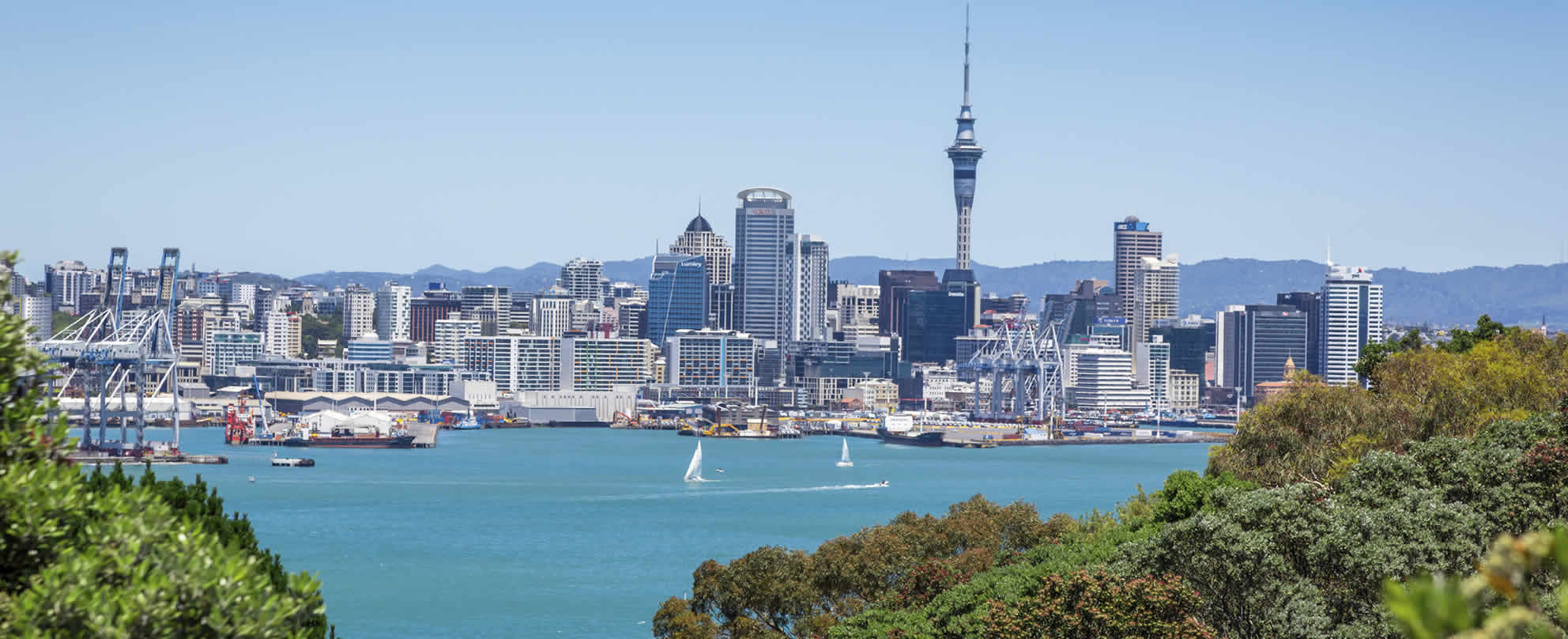 Scenic view of Auckland city across the bay with lush green trees in foreground.