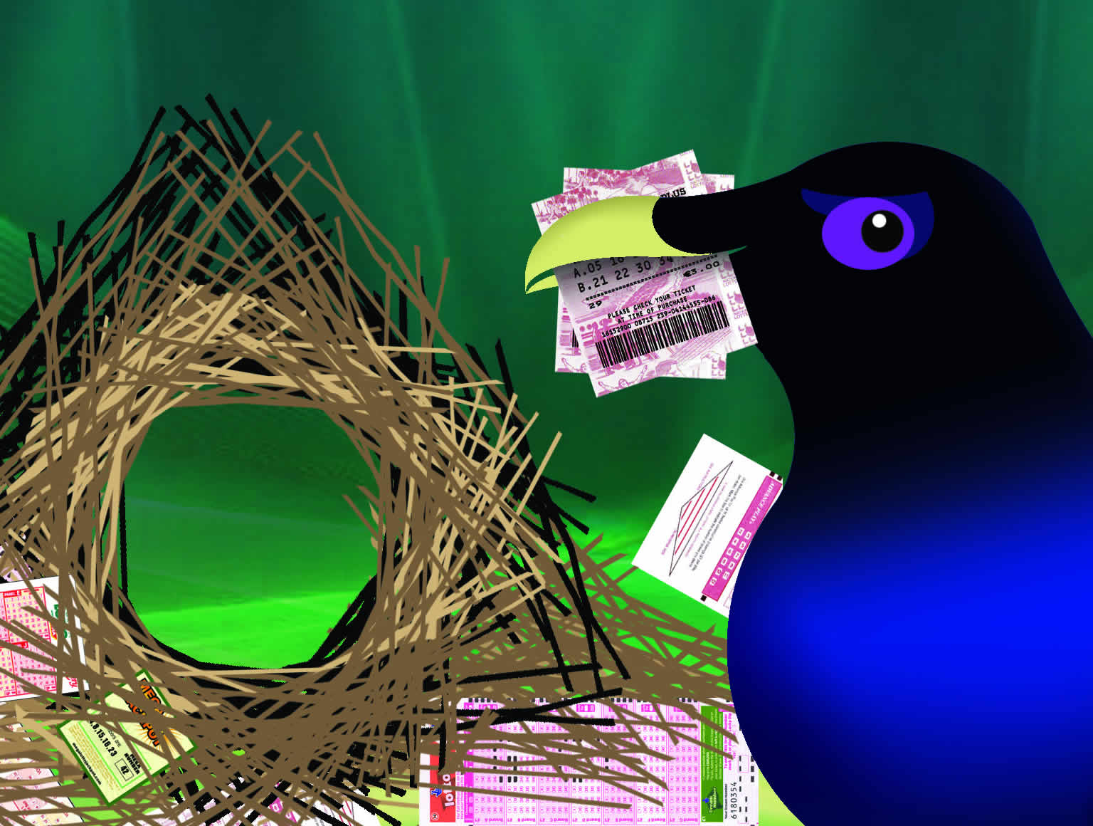 Bowerbird with lotto tickets in beak and in and around nest