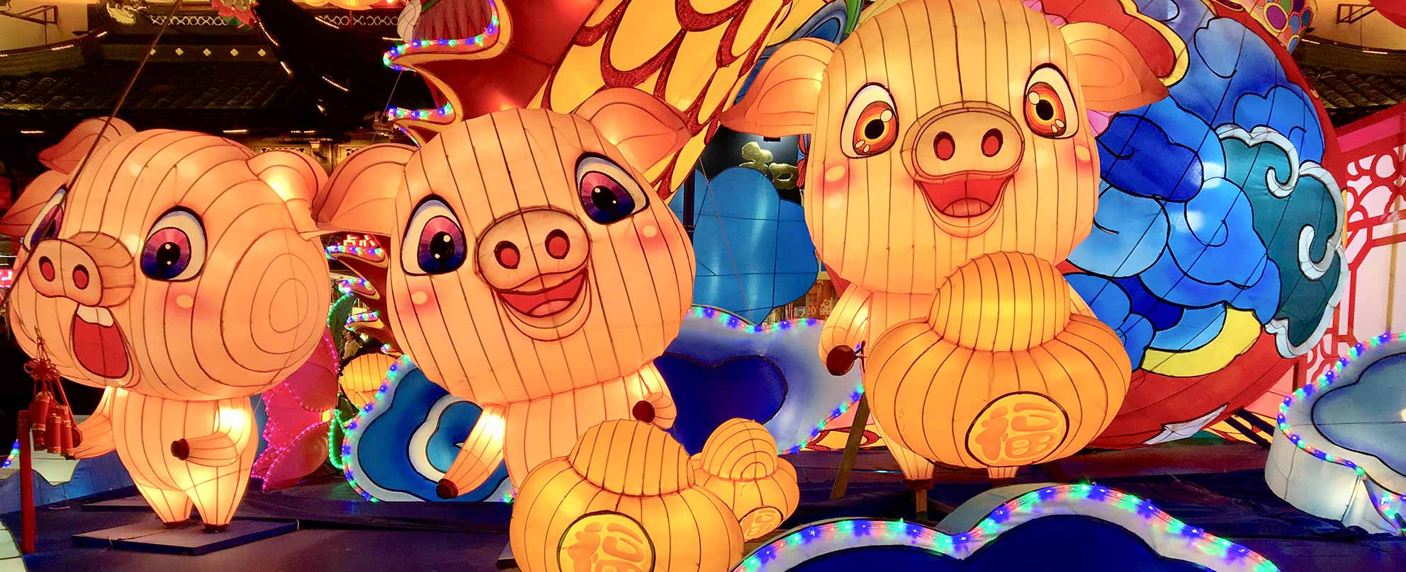 Photo of Chinese New Year decorations including three brightly coloured and lit cartoon pigs