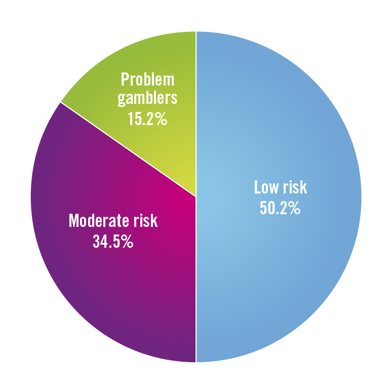 Pie chart showing low risk 50.2%, moderate risk 34.5% and problem gamblers 15.2%.